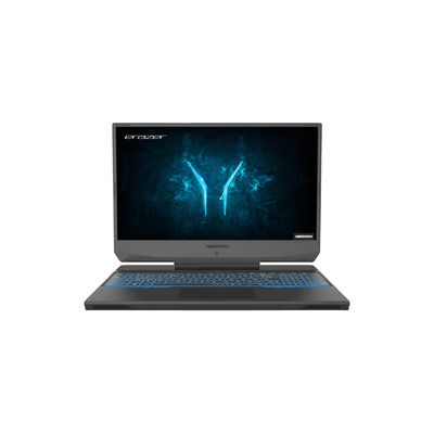 Medion Deputy P10 Core i5-10300H 16GB 512GB SSD 15.6 Inch GeForce GTX 1660 Ti Windows 10 Gaming Laptop