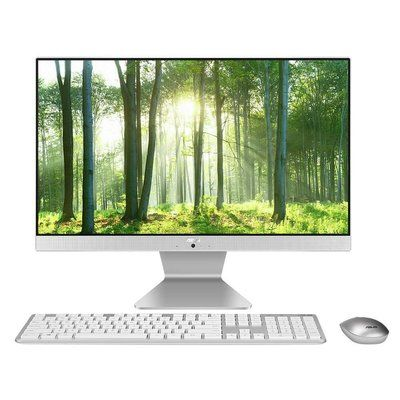 Asus Vivo V222 Intel Pentium Gold 6405U 8GB 1TB HDD 21.5 Inch FHD Windows 10 All-in-One PC